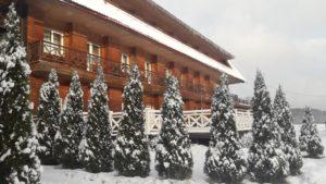 Коттеджи, отели и дома отдыха на Новый год в Подмосковье